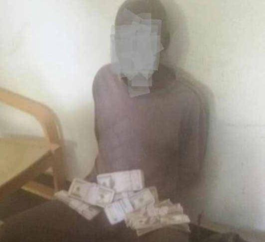 Detido cidadão com 130 mil dólares falsos