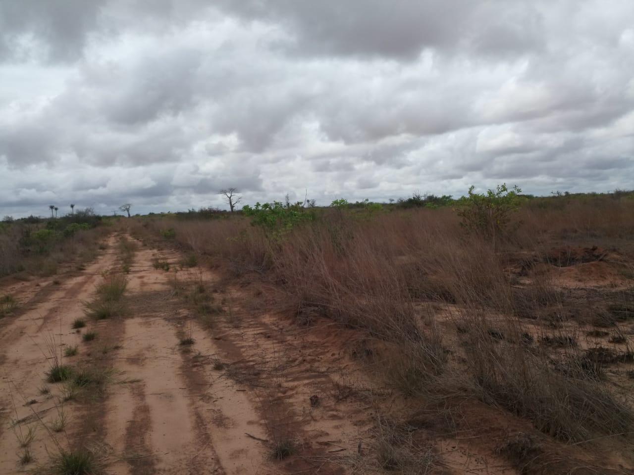 Sorteados terrenos infra-estruturados do Kilamba