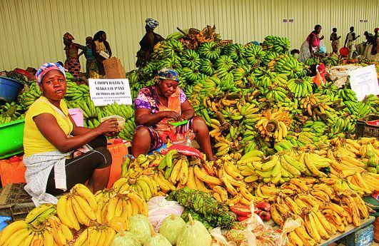 Dificuldades no acesso aos mercados encarece produtos agrícolas