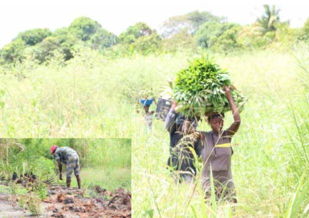Isolamento social provoca aumento de assaltos em lavras no Icolo e Bengo