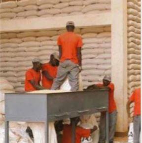 Huíla colhe mais de 209 mil toneladas de cereais