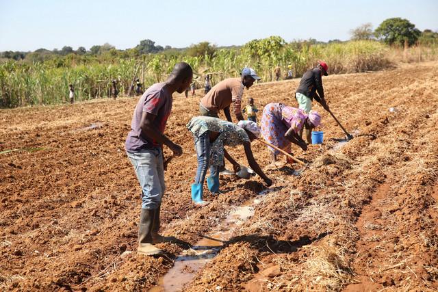 Agricultores em Camanongue pedem flexibilidade para crédito