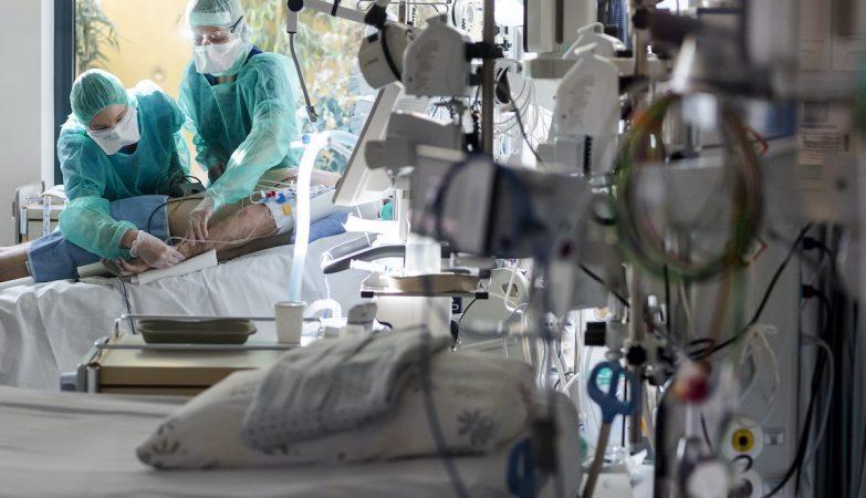 Morreu um dos jovens infectados com peste negra na Mongólia