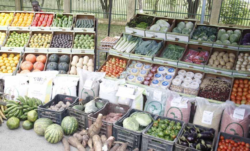 Feira do Campo no Cuanza-Sul prevê escoar mais de 40 toneladas de produtos diversos