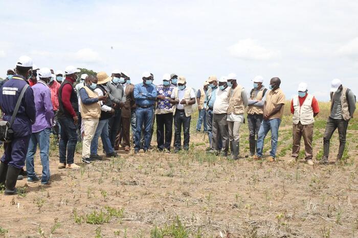 Agricultura com proposta para montagem de unidades de irrigação
