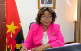 FAO: Angola vive um período de reformas profundas