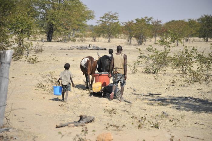 Seca e fome obriga 15 mil angolanos a migrar para o Norte da Namíbia