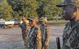 Grupo armado invade e mata residentes numa aldeia costeira em Moçambique