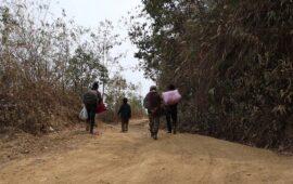 Pelo menos 20 mortos e 24 mil deslocados após ataques do exército em Myanmar numa zona controlada pela guerrilha étnica Karen
