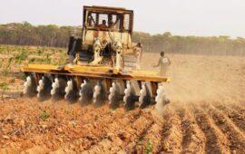 MEP garante apoio para aquisição de crédito a produtores da Huíla
