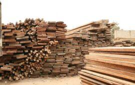 Uíge lidera produção de 175, 9 mil metros cúbicos de madeira prevista para este ano
