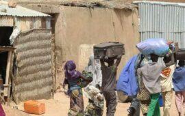 Ataques na Nigéria levam centenas de pessoas a fugir para o Níger