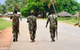 """Chefes de Estado e de governo da SADC debatem, amanhã, resposta contra o """"terrorismo"""" em Moçambique"""