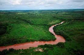 Expedição científica procura metais pesados no rio Tchicapa que terão causado mortes na RDC
